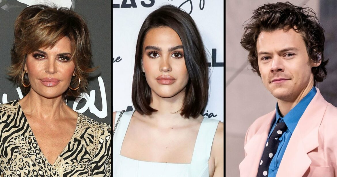 No Scott? Lisa Rinna Jokingly Wishes Daughter Amelia Was With Harry Styles